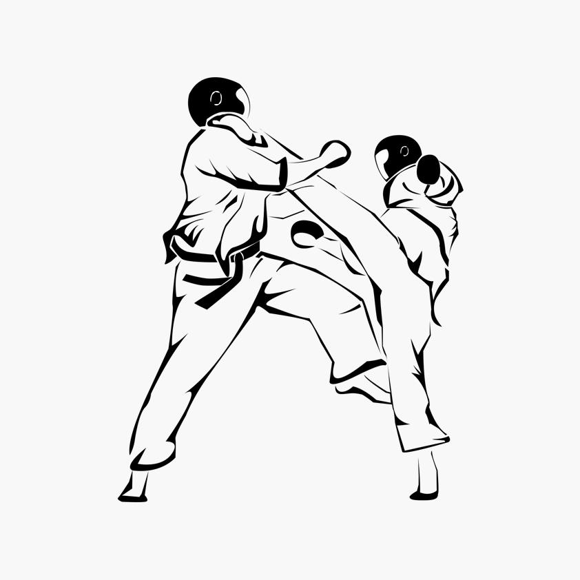 Illustration Livre Viet Vo Dao – Combat