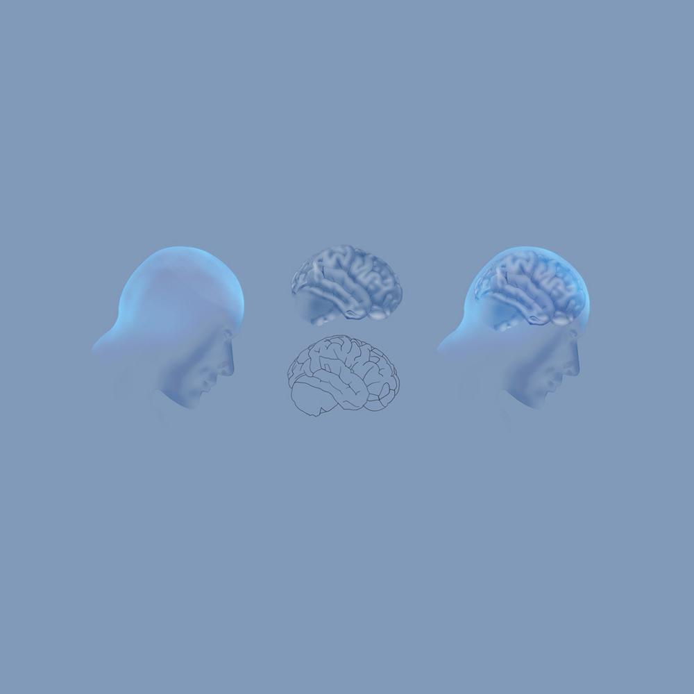 Dessin Brain